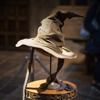 Harry Potter Studio Tour - £75ad £65ch