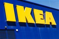 Ikea Exeter.......£15