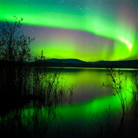 Northern Lights Fred Olsen Cruise..from £1699pp