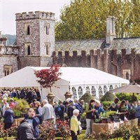 Toby Buckland's Garden Festival