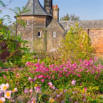 Tatton Park Flower Show & RHS Bridgewater