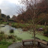 The Garden House & Tavistock