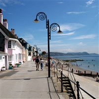 Lyme Regis and the Donkey Sanctuary £22.50