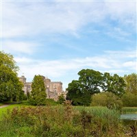 Powderham Castle & Exeter - £25inc