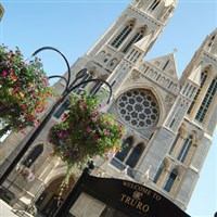 Truro, Cornwall Shopping day - £26.50