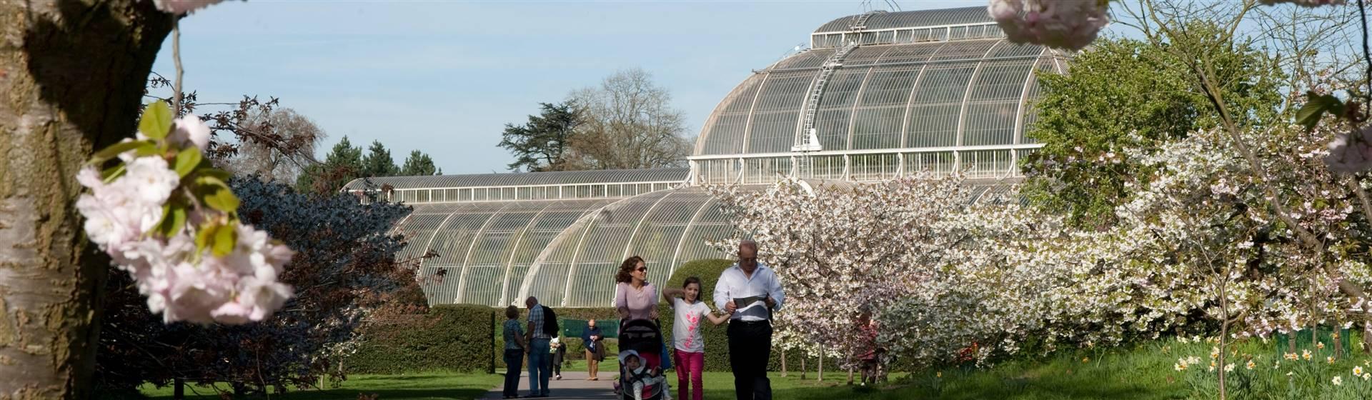 Buckingham Palace & Kew Gardens